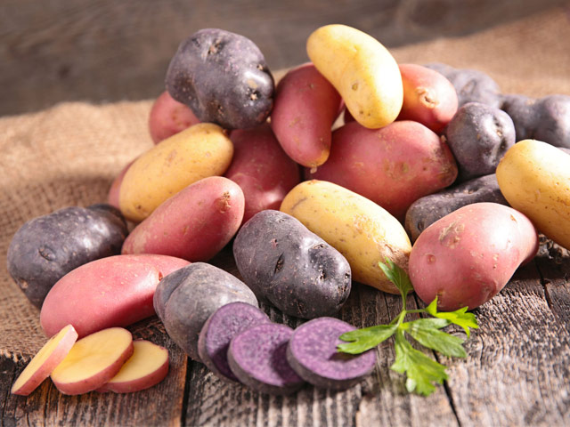 kartofel-semennoy
